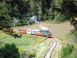 Train touristique à vapeur