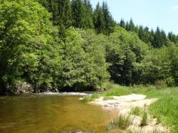 La rivière Lignon