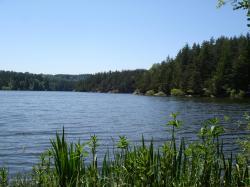 Photo lignon et lac 010