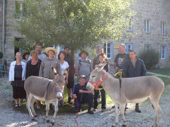 Visite des ânes à la Papeterie