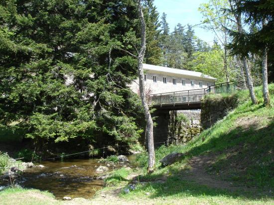 Entre rivière et forêt