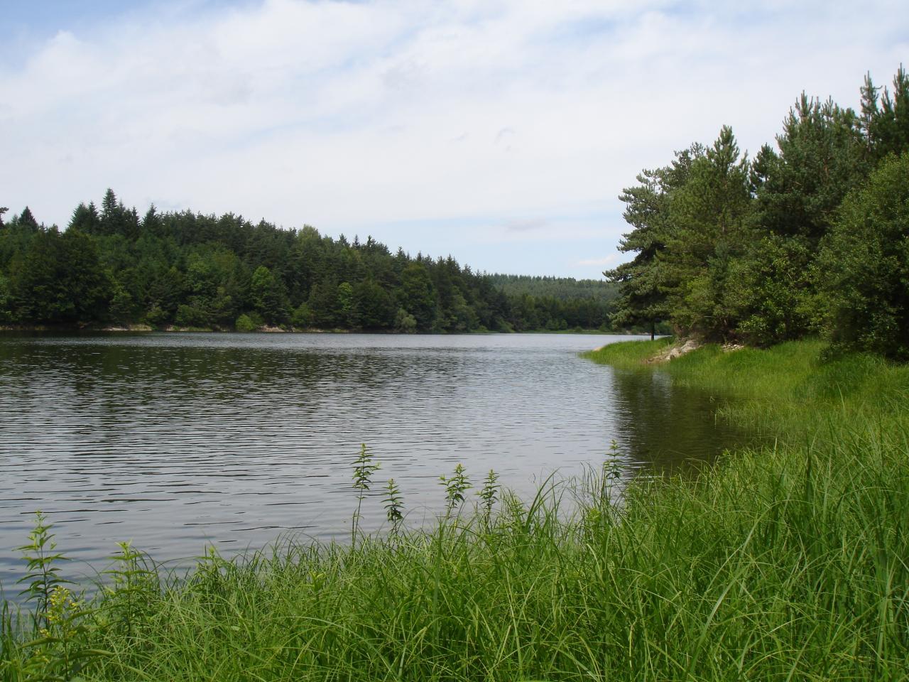 Un environnement sauvage et protégé