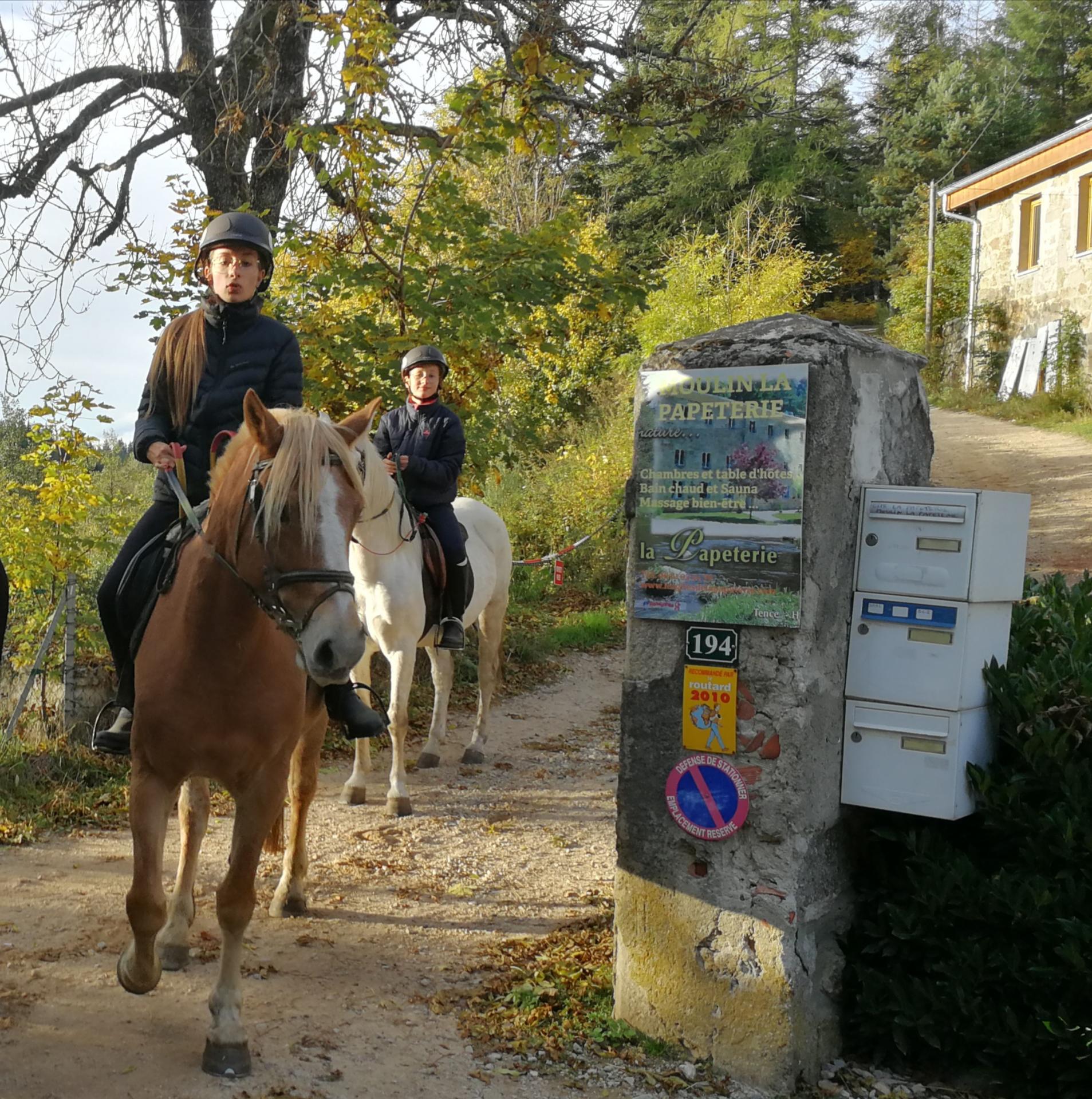 Les ballades à cheval et à poney